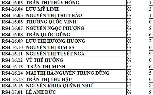 Hình ảnh data danh sách khách hàng Rich Star Tân Phú